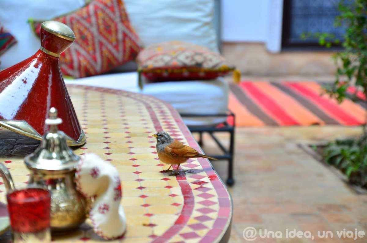 que-ver-hacer-marrakech-imprescindible-unaideaunviaje-19