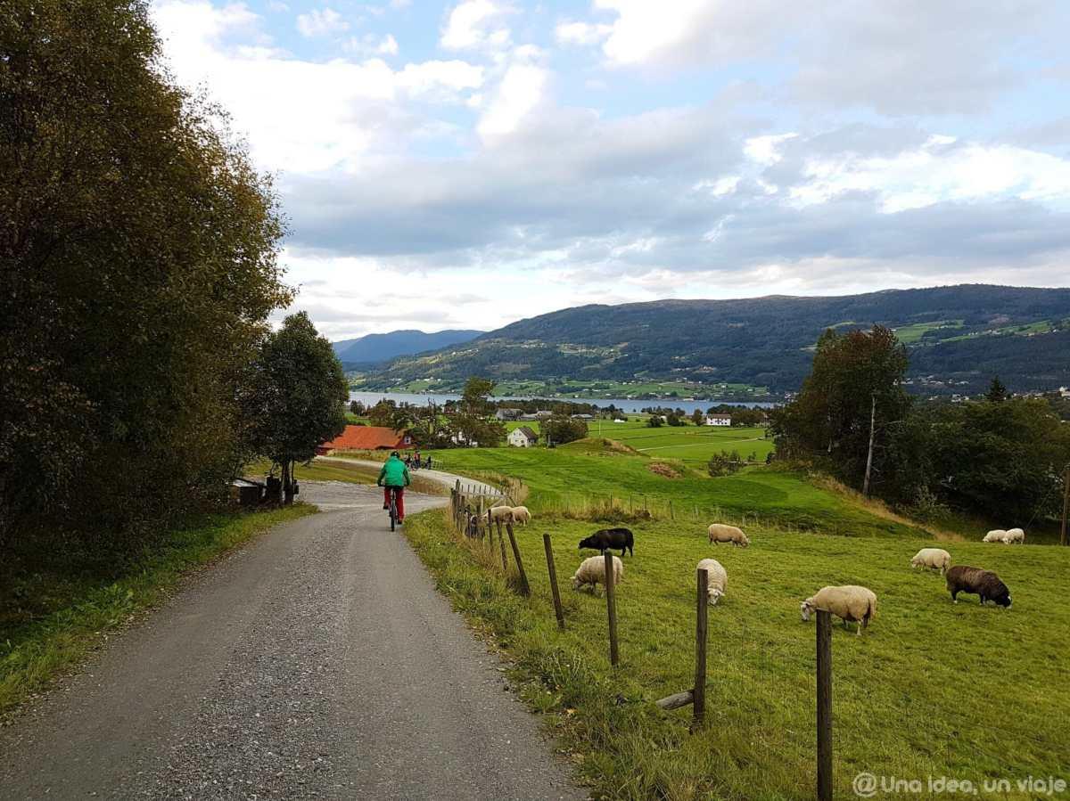 que-ver-hacer-fiordos-noruega-una-semana-ruta-preparativos-unaideaunviaje-05