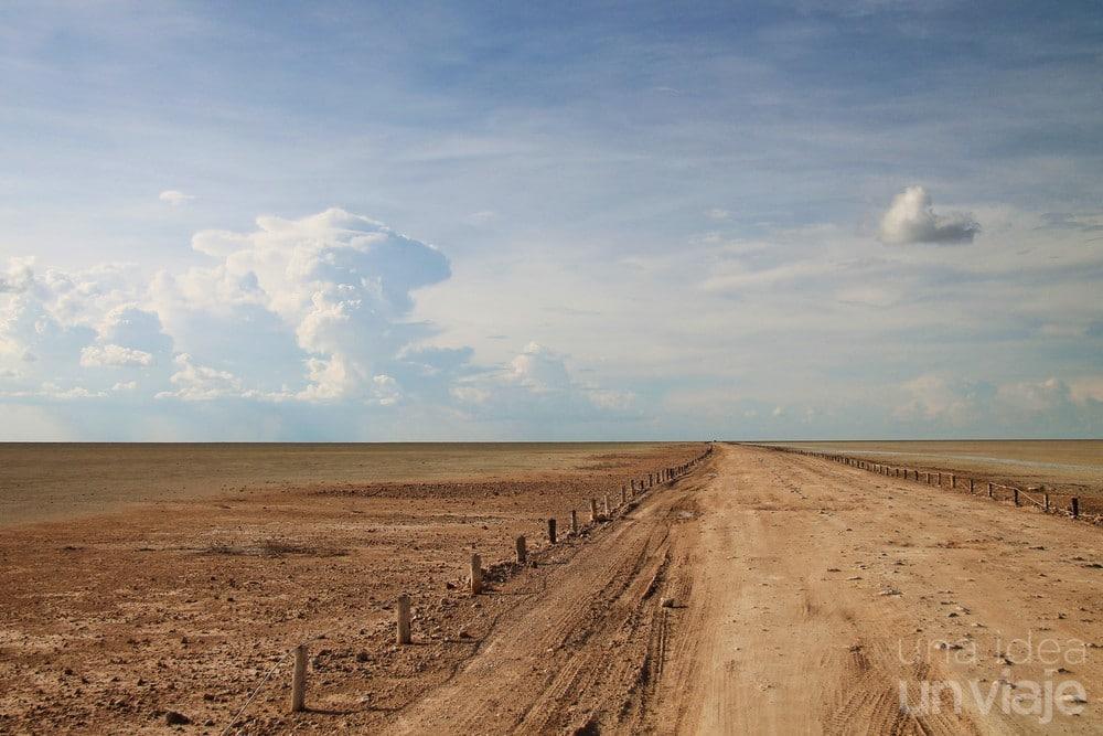 Salina central llanura Etosha National Park