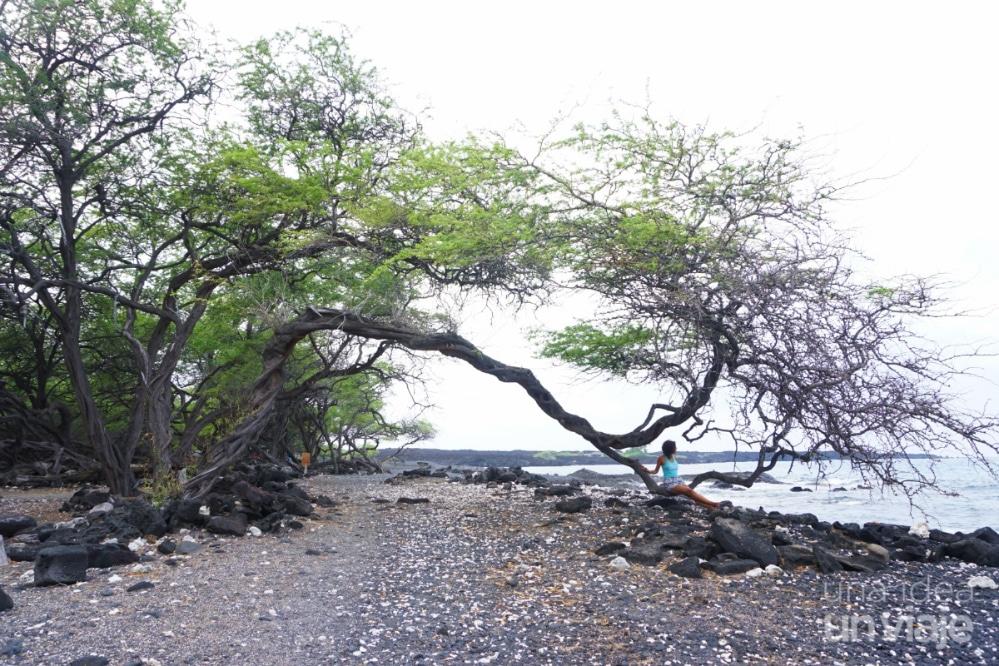 Kiholo Bay - Hawaii