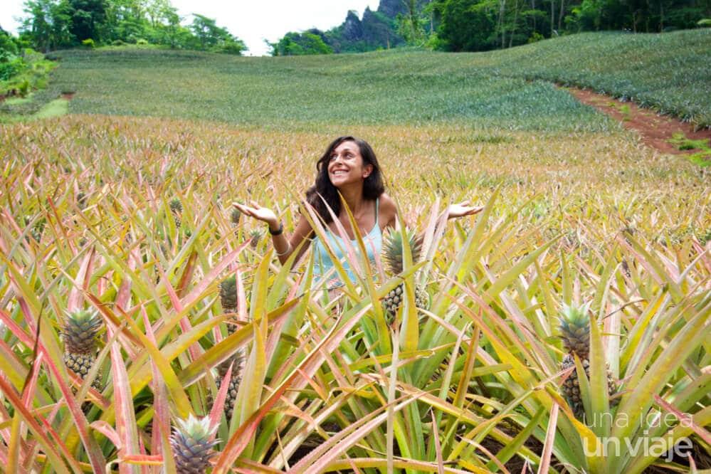 Frutas de Moorea: Consejos viajar Polinesia Francesa