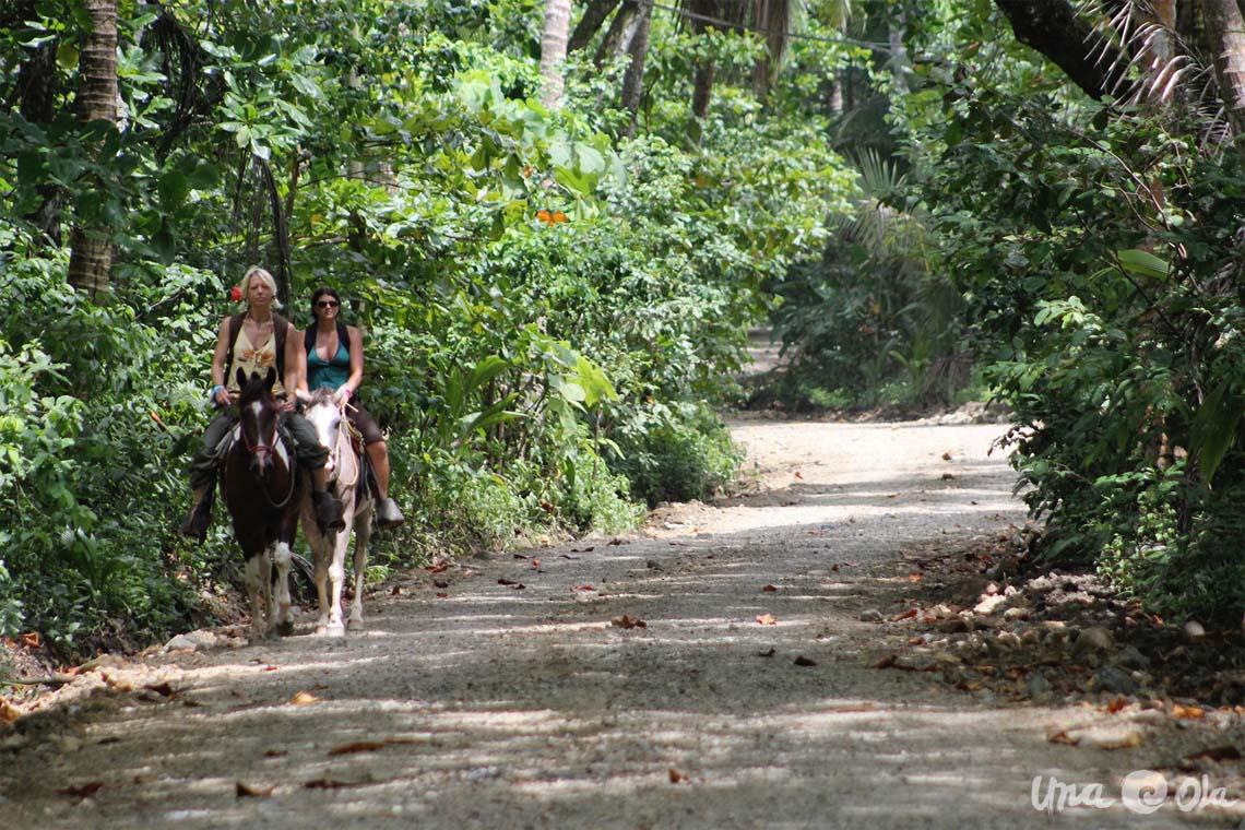 Horseback Tours Costa Rica