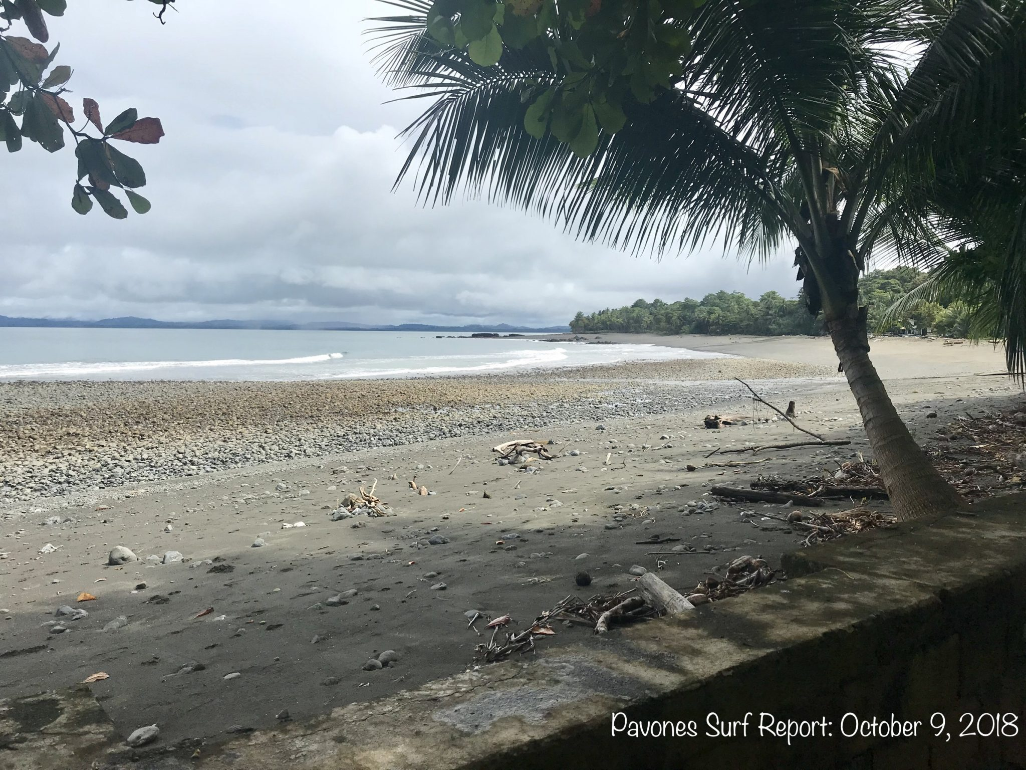 Pavones Costa Rica Surf Report Photo