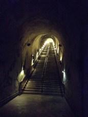 Cellar Enterance