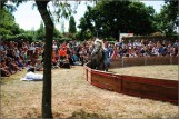 cirque equestre_09