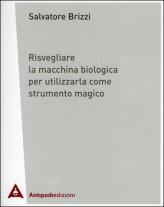 Il cammino della luce - Michela Salotti, Paolo Montanari, Roberto Fabbroni (spiritualità)