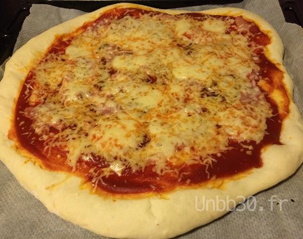 pâte à pizza au companion moulinex