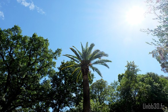 Le Parc Départemental Estienne D'Orves [Sortir 06]