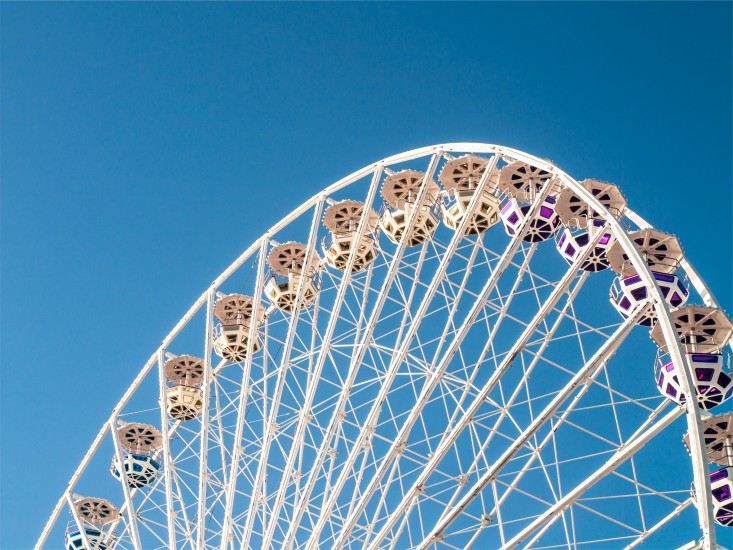 amusement-park-big-wheel-ferris-wheel-4921-733x550
