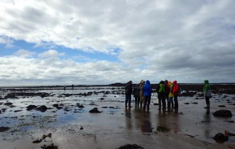 Naturalists at Mace's Bay, NB