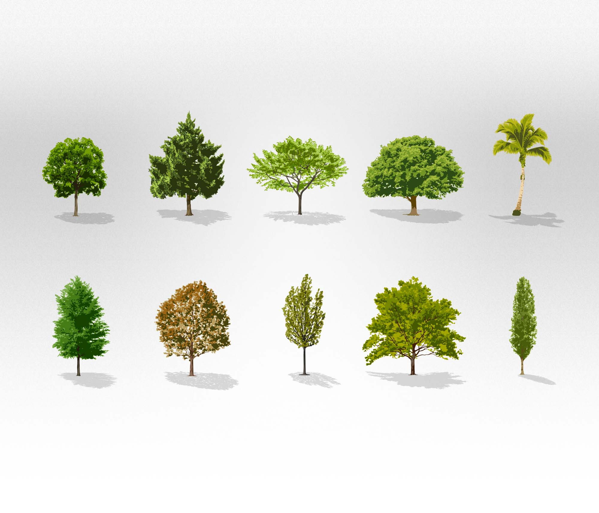 free vector trees collection