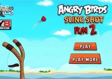 Angry Birds Slingshot Fun
