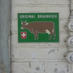 Original Braunvieh