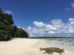 Beach (Low Tide)