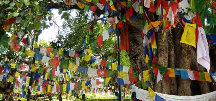 Lumbini Nepal Tour | Best travel guide & map to Buddha's birthplace Part 2