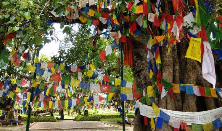 Lumbini Nepal Travel Travelogue