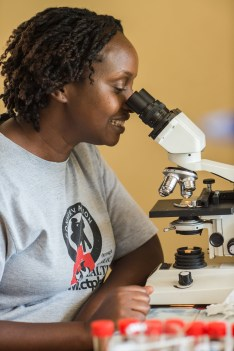 Dr. Gladys, analyzing gorilla fecal samples.