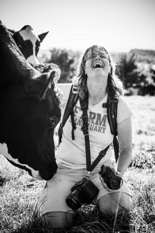 Anita Krajnc with a rescued cow at Farm Sanctuary. USA, 2013.