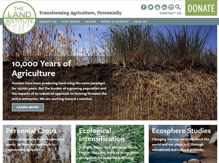 Screenshot of The Land Institute website