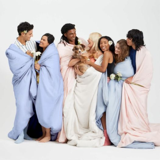 Buffy comforter presidents day sale
