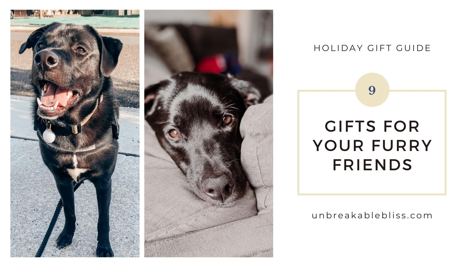 Holiday gift guide: Gift ideas for your furry friends