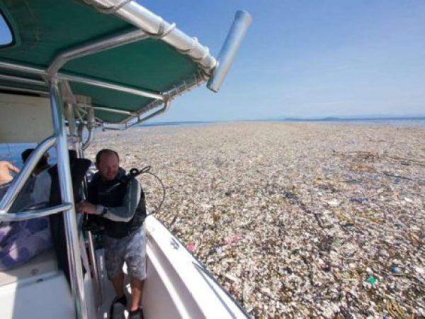 shocking photo waste carribean