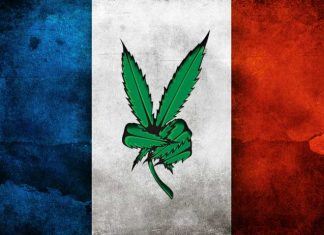 France-to-Effectively-Decriminalize-Cannabis-by-Ending-Prison-Terms-