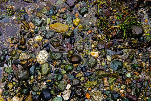 Pebbles in a lake.