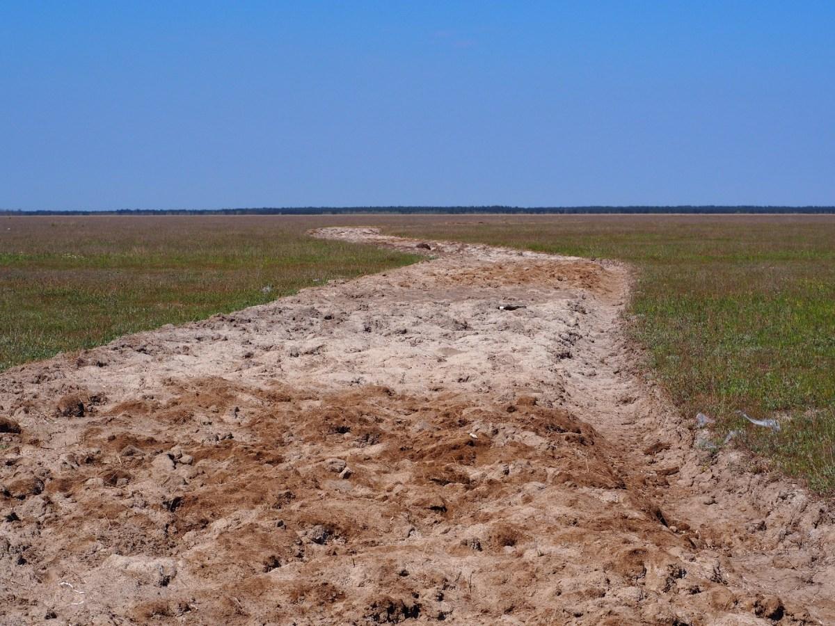 Дана територія є унікальним ландшафтом – «салтмарш», які притаманні для приливних морів і практично відсутні на Чорному морі.