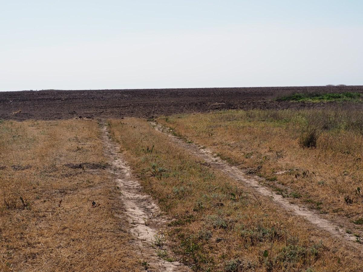 Переорані дороги з Очаківського в Іванівку