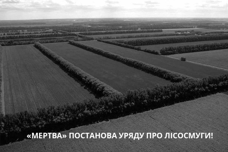 Уряд видав постанову про лісосмуги, на жаль, «мертву»
