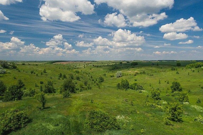 На Київщині судитимуть фермерів