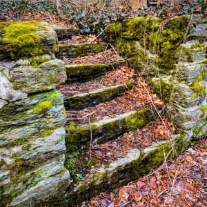 Ruins of Mill Creek