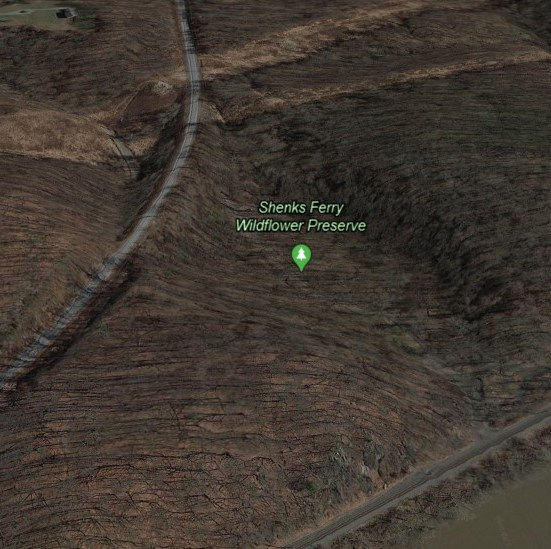 Google Earth photo of Shenks Ferry today.
