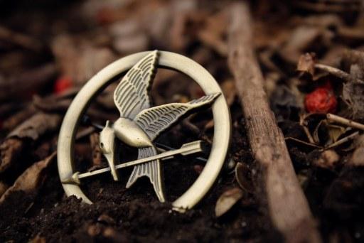 hunger games symbol