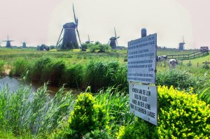 Kinderdijk would be under water were it not for Dutch ingenuity.