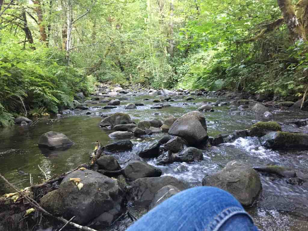 Just sitting in on a rock in the middle of a perfect creek on a perfect summer day.