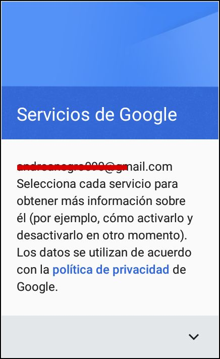Información de los Servicios de Google