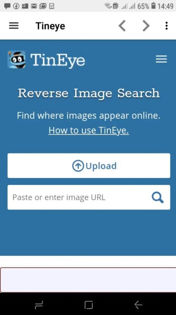 app para buscar personas por foto en Facebook_tineye_2