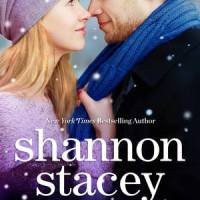 Review: Snowbound with the CEO – Shannon Stacey