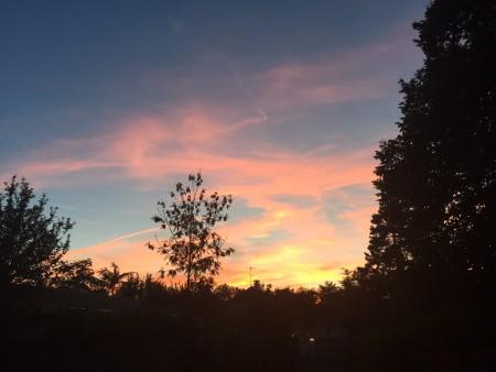 Sunset - (un)Conventional Bookviews
