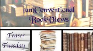 Teaser Tuesday - (un)Conventional Bookviews