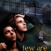 Review: Few Are Chosen – Storm Grant