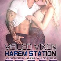 Blogger Wife Chat Review ~ Veiled Vixen ~ KC Cross