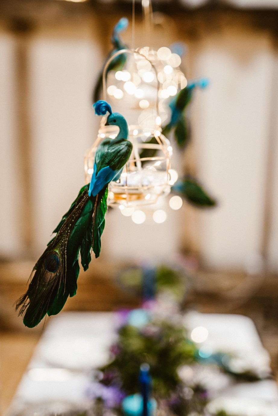 Peacock barns - alternative unconventional wedding photoshoot - rustic decadent - peacock hanging detail