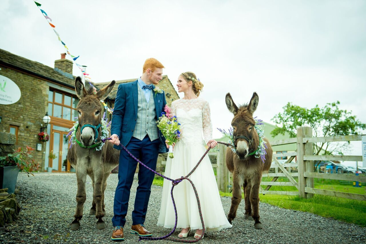 The wellbeing farm - alternative wedding venue- alpaca wedding - donkey wedding - outdoor wedding - north west wedding venue - unconventional wedding