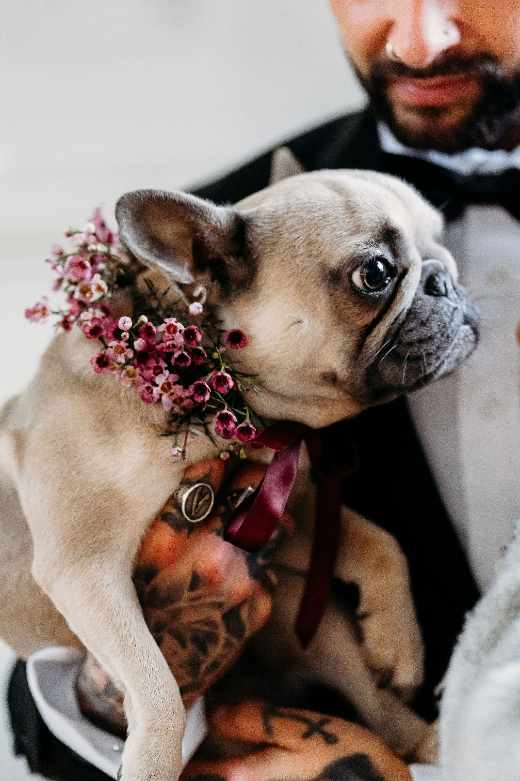 Leesha Williams Photography- Unconventional Wedding- Celestial Wedding Inspiration- alternative wedding- dogs at weddings