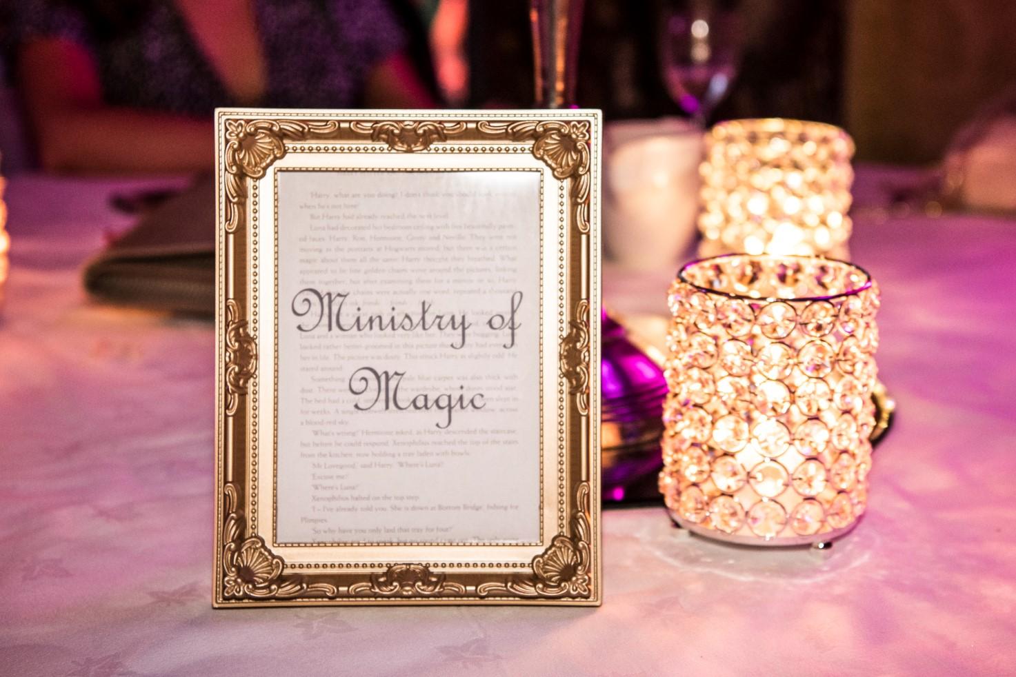 Harry Potter Wedding Ideas- Zoo Wedding- Emma May Photography- Unconventional Wedding- Unique Wedding Inspiration