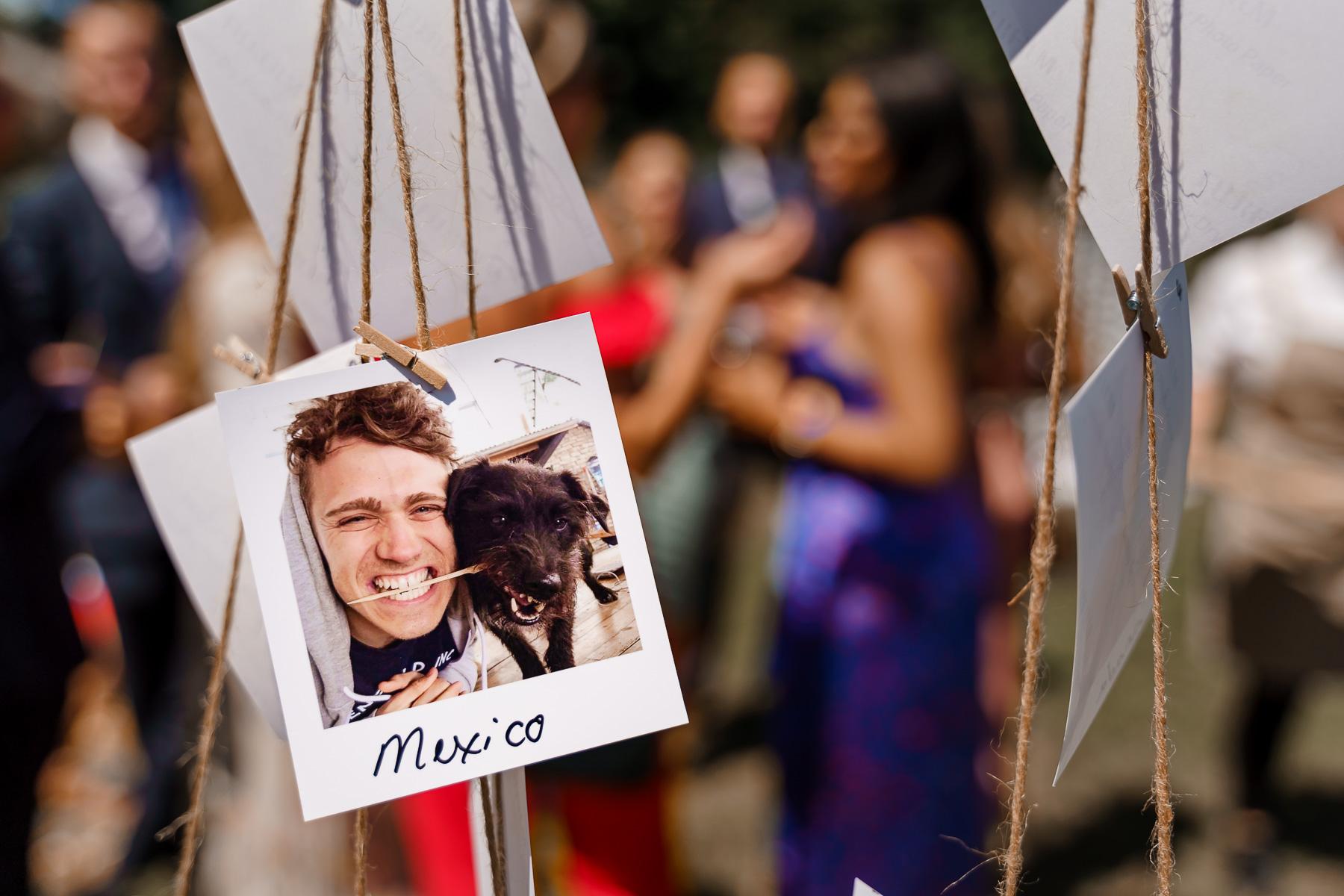 dog friendly wedding- dogs at weddings- katherine and her camera- dog wedding accessories-unconventional wedding- wedding planning advice- pets at weddings- wedding Polaroid