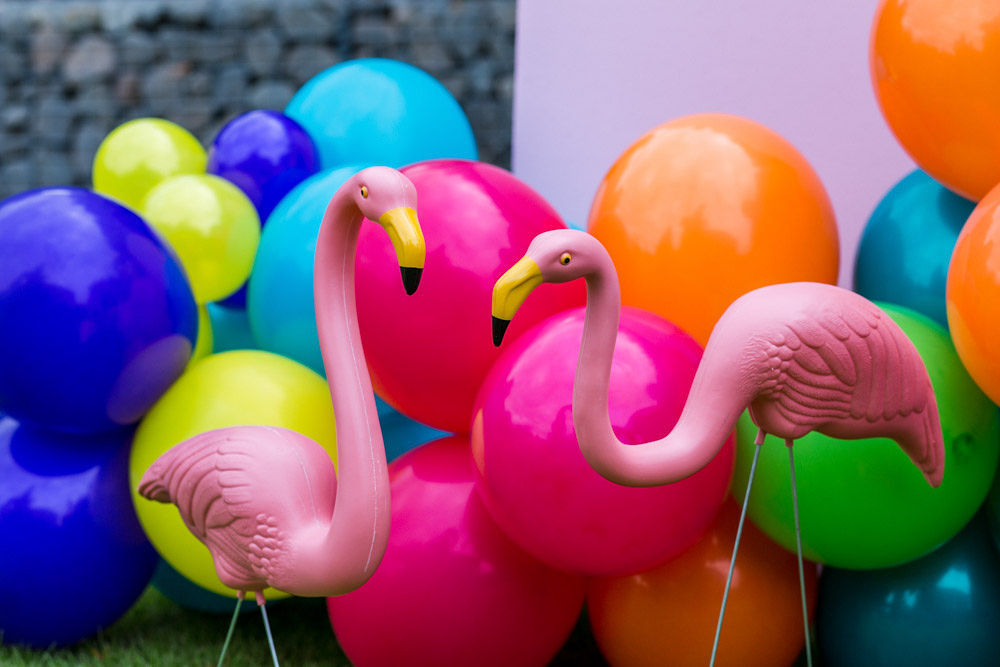 flamingo wedding - colourful wedding - rainbow wedding - garden wedding - summer wedding - unconventional wedding - alternative wedding- fun wedding